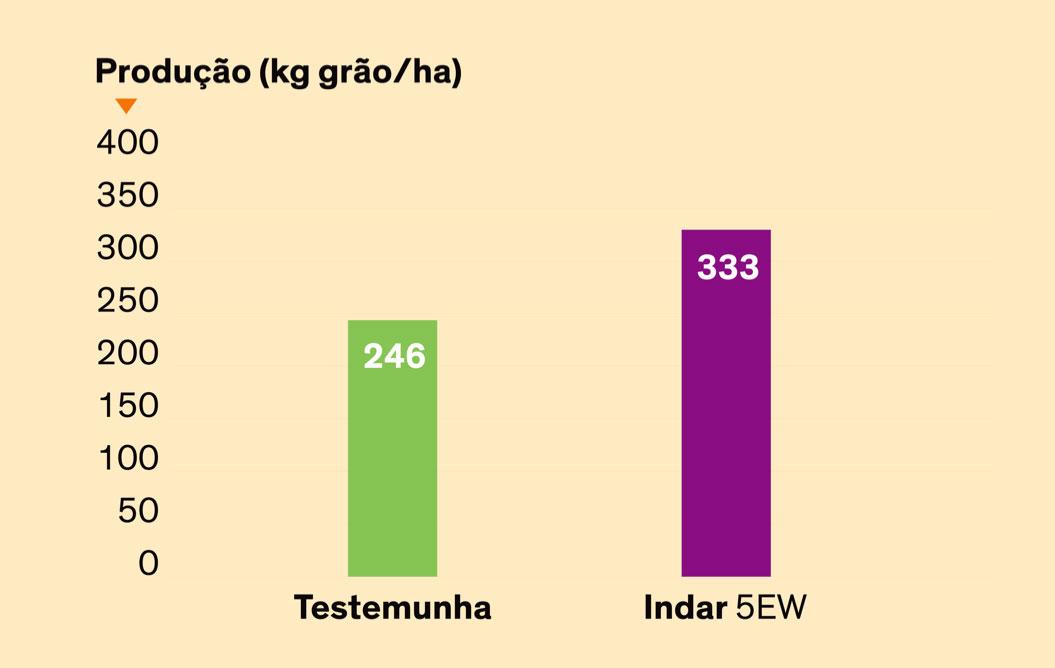 Produção (kg grão/ha) - Ensaio realizado em Lérida pela Dow AgroSciences