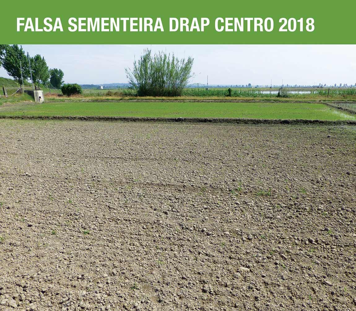 Falsa sementeira DRAP Centro 2018