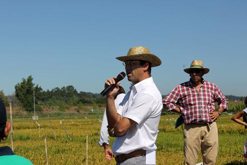 Gonçalo Canha, membro da equipa de Desenvolvimento da Lusosem