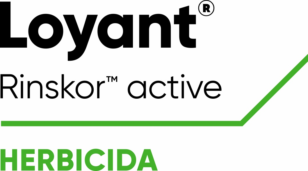 Loyant - Herbicida para as infestantes da cultura do arroz