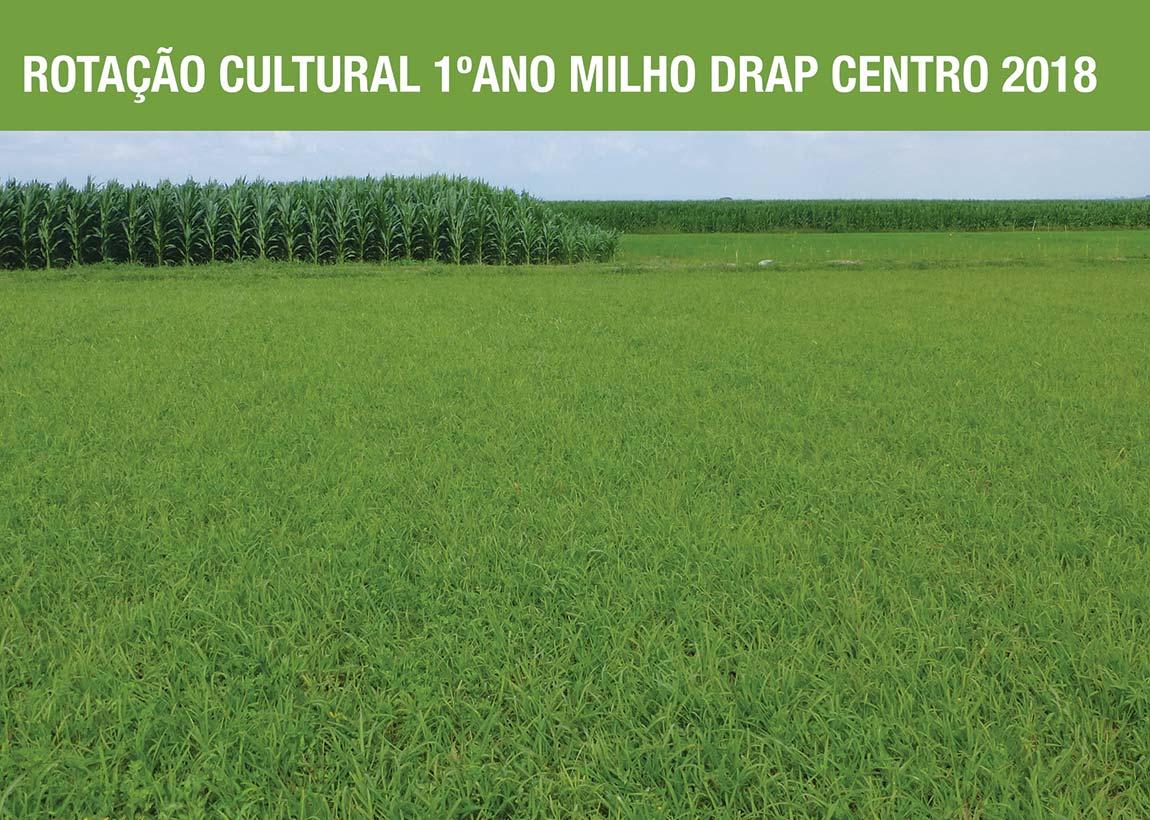 Rotação cultural – 1º ano – Milho DRAP Centro 2018