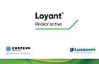 Loyant - Herbicida de Nova Geração na Cultura do Arroz