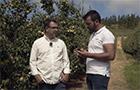 Delegate® - Testemunho de Carlos Henriques - Frutas Painho S.A.