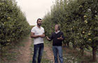 Delegate® Insecticida - Testemunho do Fruticultor João Alves