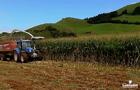 Campanha Milhos Híbridos 2020 – LG nos Açores | Lusosem®