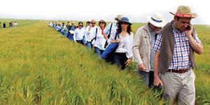 Lusosem participa em ensaios de cereais biológicos da CERSUL