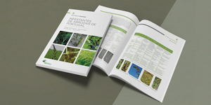 Lusosem e Instituto Superior de Agronomia apresentam livro Infestantes de Arrozais de Portugal no âmbito do Grupo Operacional +ARROZ