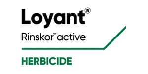 LOYANT - Uma Nova Geração Herbicida na Cultura do Arroz