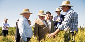Lusosem apoiou Dia do Agricultor em Elvas onde foi apresentada a estratégia nacional para a promoção da produção de cereais